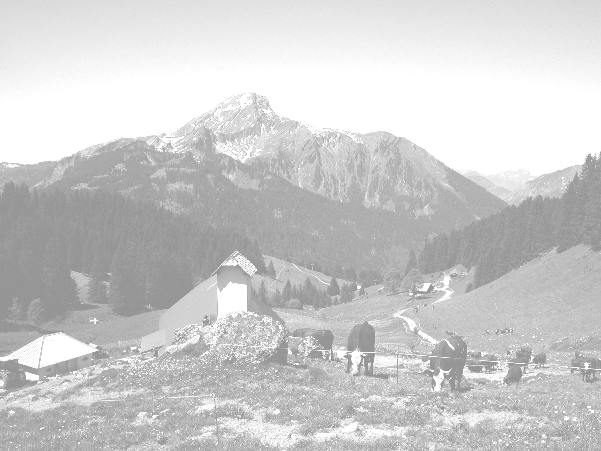 Fond-montagne-grange