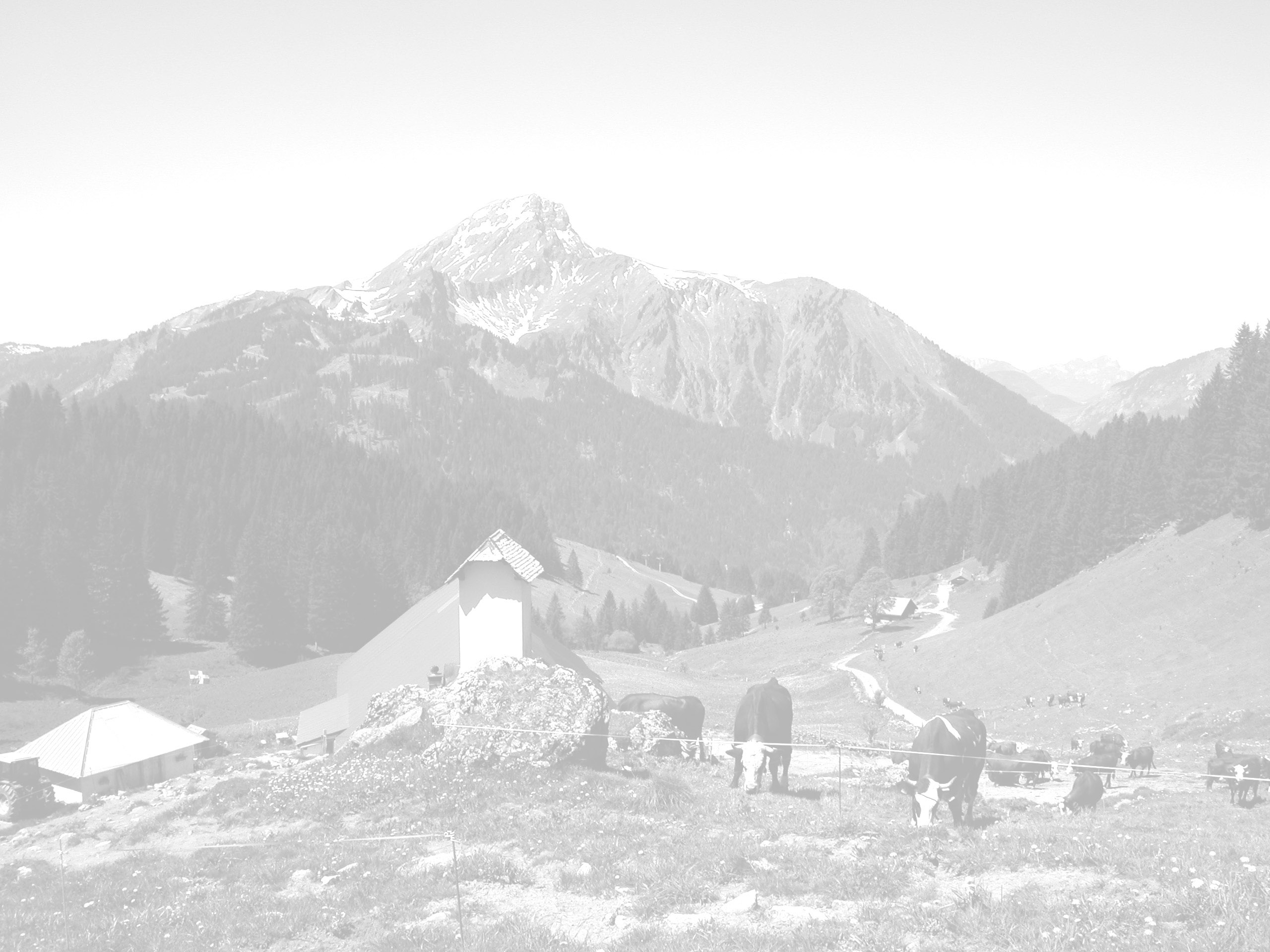 Fond-montagne-grange2